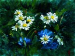 50. Scented Mayweed